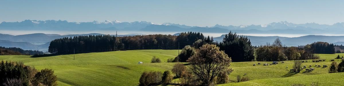 Landkreis Waldshut cover
